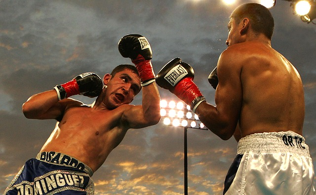 Kampfsportarten für Einsteiger: Diese 5 musst du kennen!